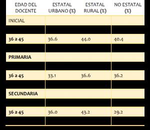 Fuente: CNE – Encuesta a Docentes, 2014. Elaboración propia.